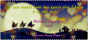 Voeux 2016 CNL